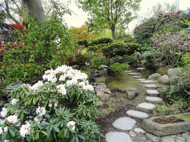 Top 5 reasons you should hire a professional landscape for Master landscape home design pro
