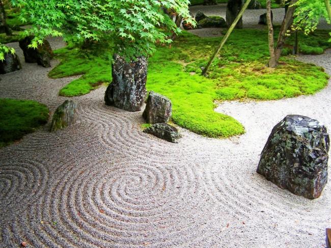 Top 5 Reasons You Should Hire A Professional Landscape Designer
