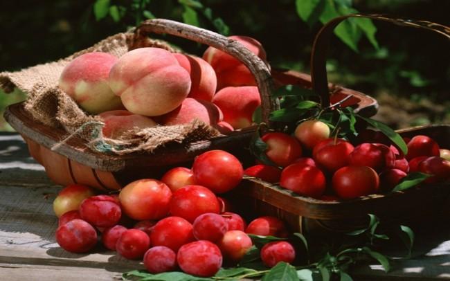 basket-fruit-hd