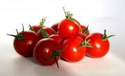 garden tomatos2