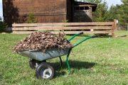 shredded leaves for garden beds