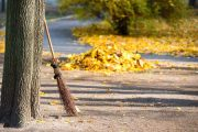 leaf piles in street for collection