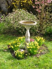 water source in a pollinator garden
