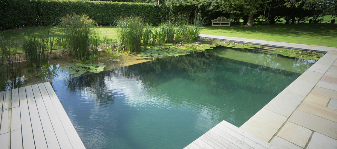 Natural swimming pools 0 chemicals 100 fun Environmentally sustainable swimming pools